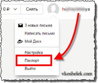 Пользовательский Яндекс Паспорт