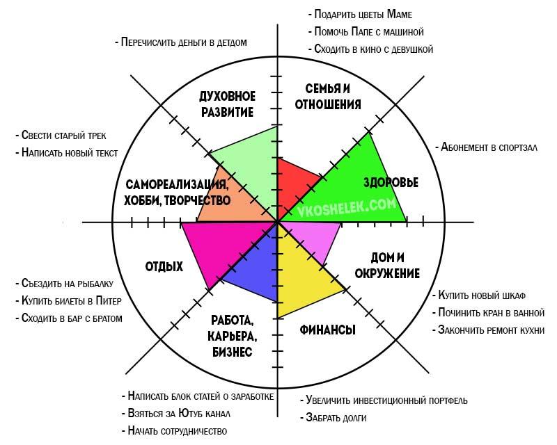 Инфографика - колесо жизненного баланса
