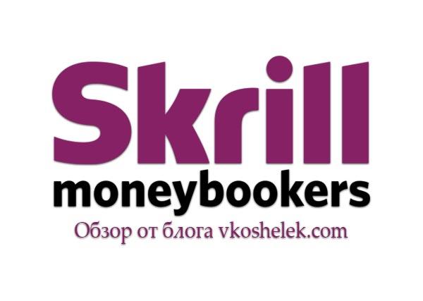 Превью к обзору платежной системы Skrill