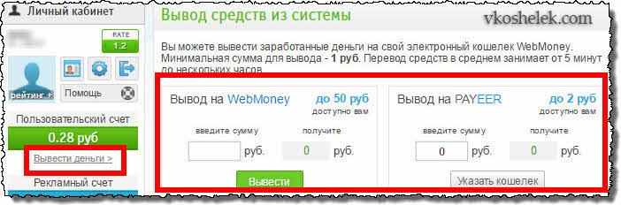 Вывод заработанных денег из RayMoney