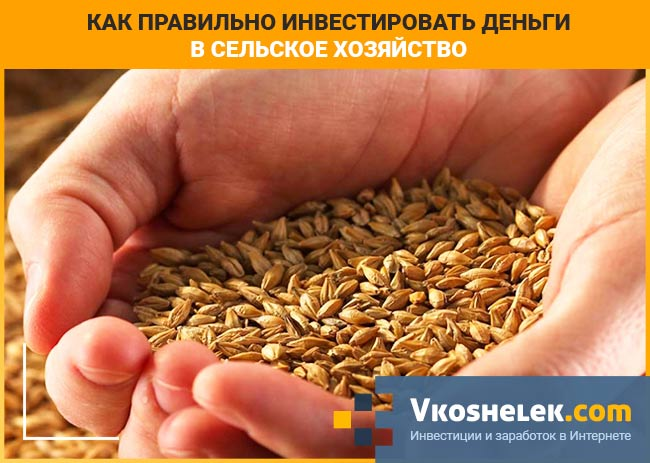 Урожай сельскохозяйственных угодий