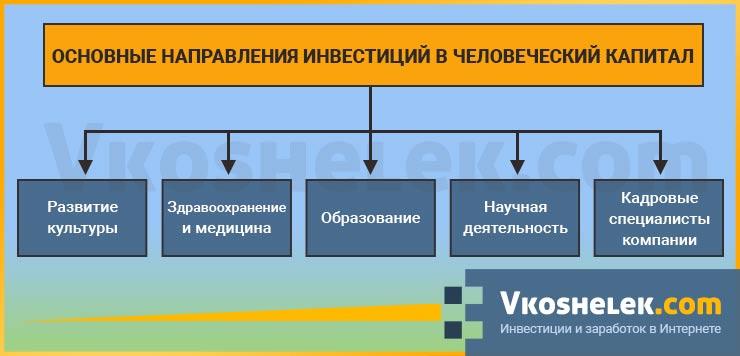 Схема видов инвестирования в человеческий капитал