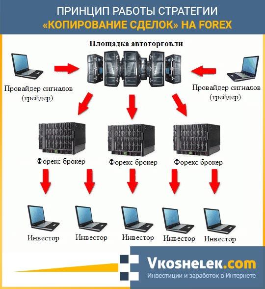 финансовый рынок форекс принципы функционирования