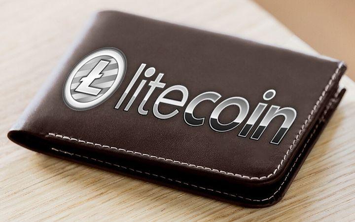 Бумажник в виде лайткоина
