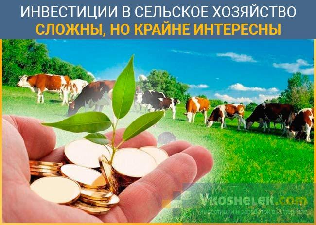 Инвестирование в сельхоз